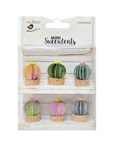 Mini Succulents Barrel Cactus