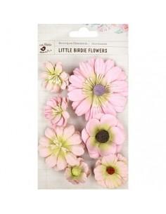 Mini Succulents Jamie Pearl Pink